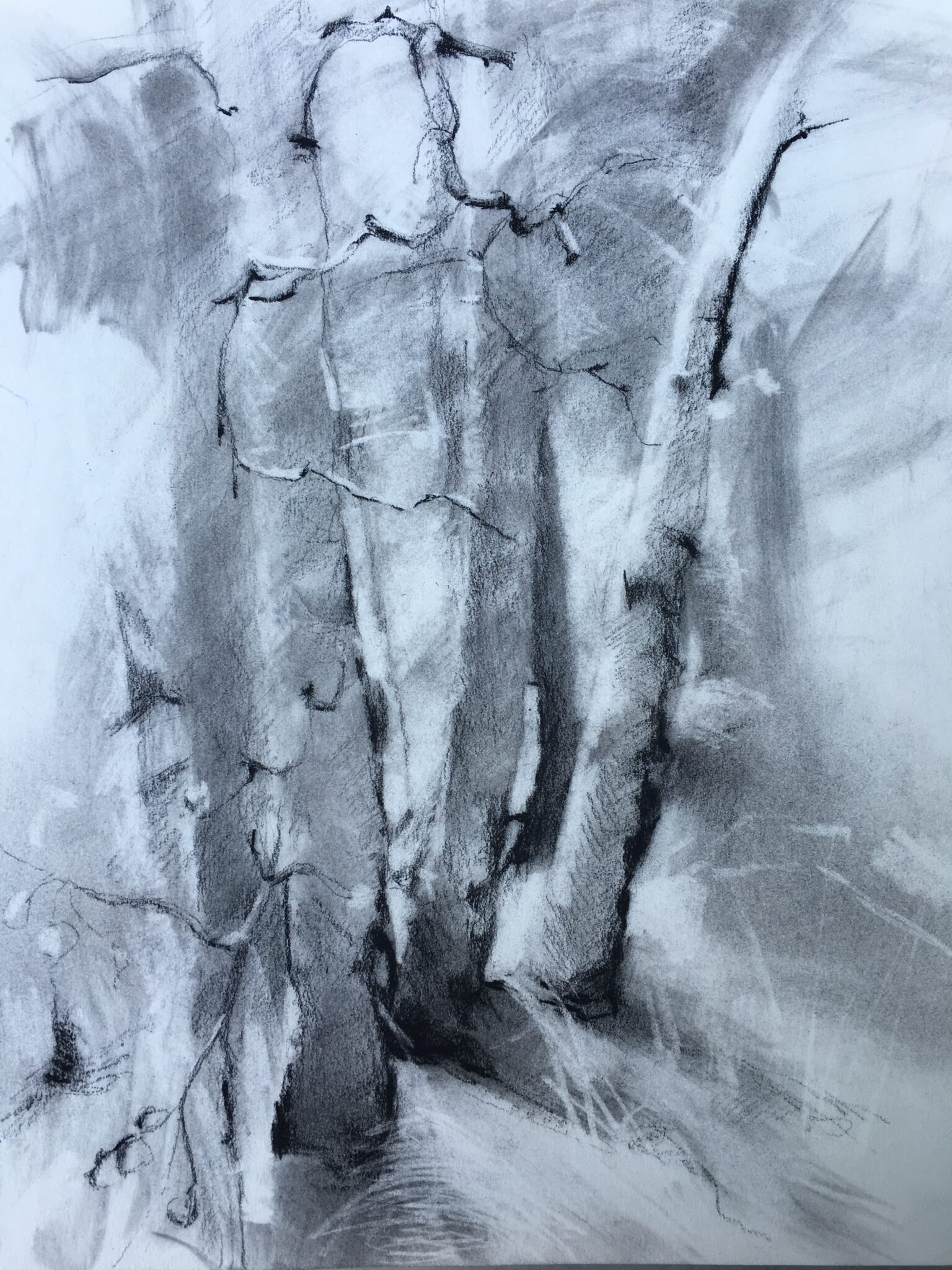 "Susan Cook ""Tahoe"" charcoal on paper, 11x15"